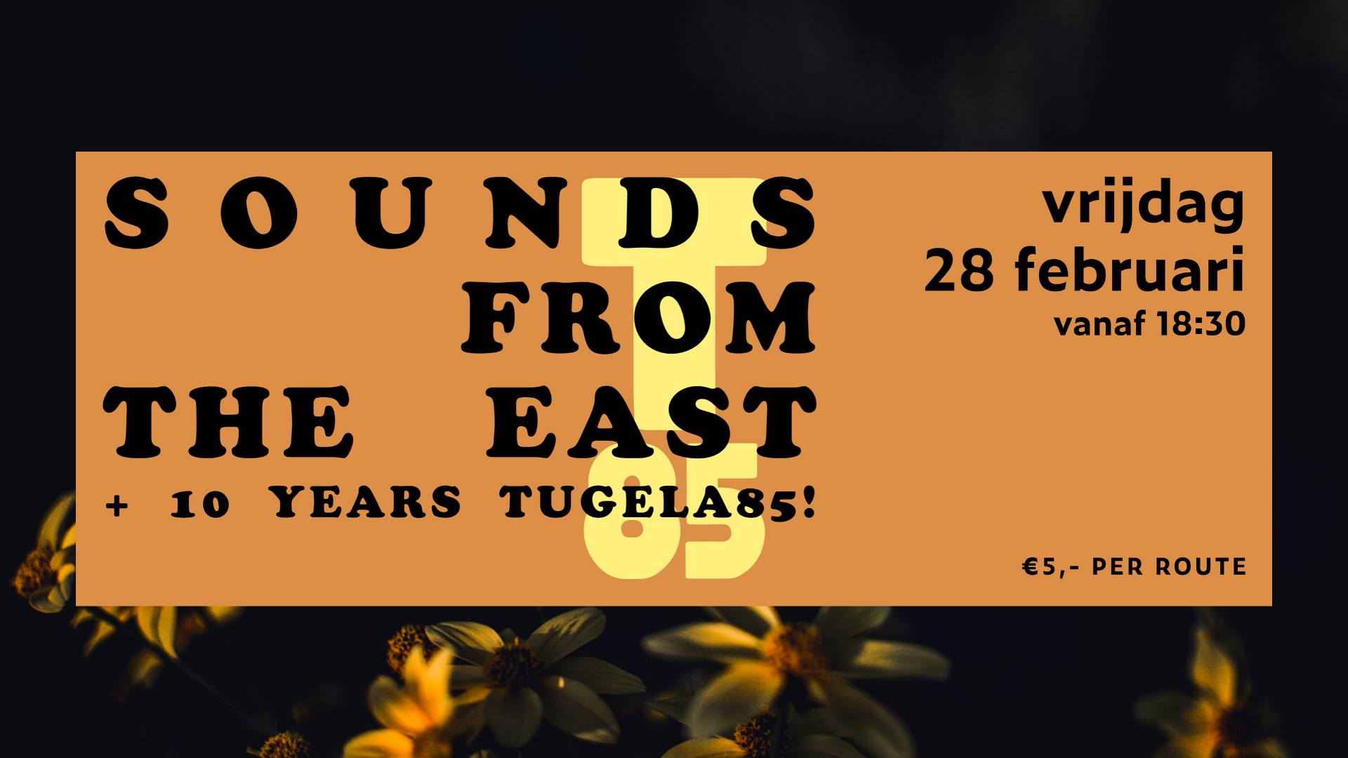 Sounds From the East + 10 jaar Tugela85